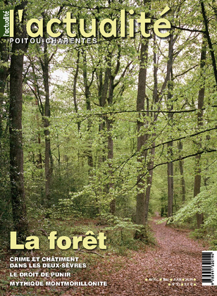 L'Actualité Poitou-Charentes, numéro 92, avril, mai, juin 2011.